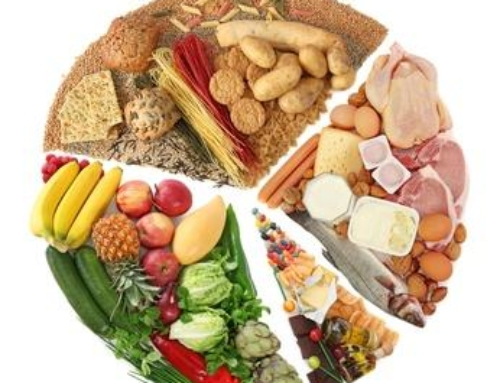 Real Food First – Supplement Strategies For Basketball Nutrition